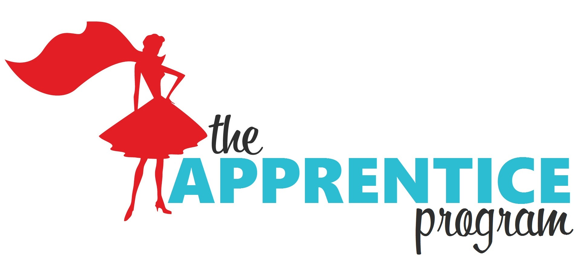 The Apprentice Program by The Simplifiers